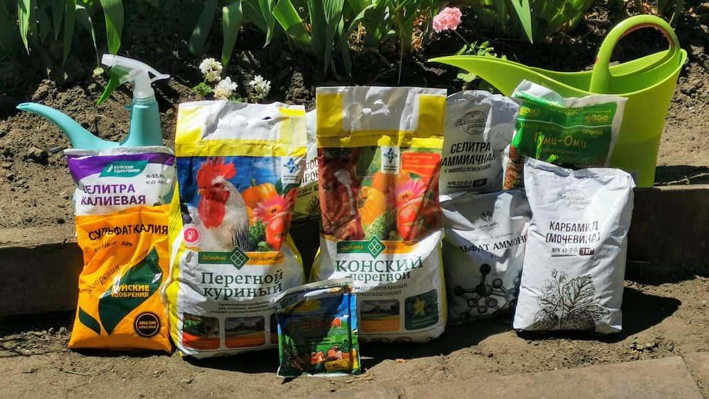 удобрение для подкормки огорода