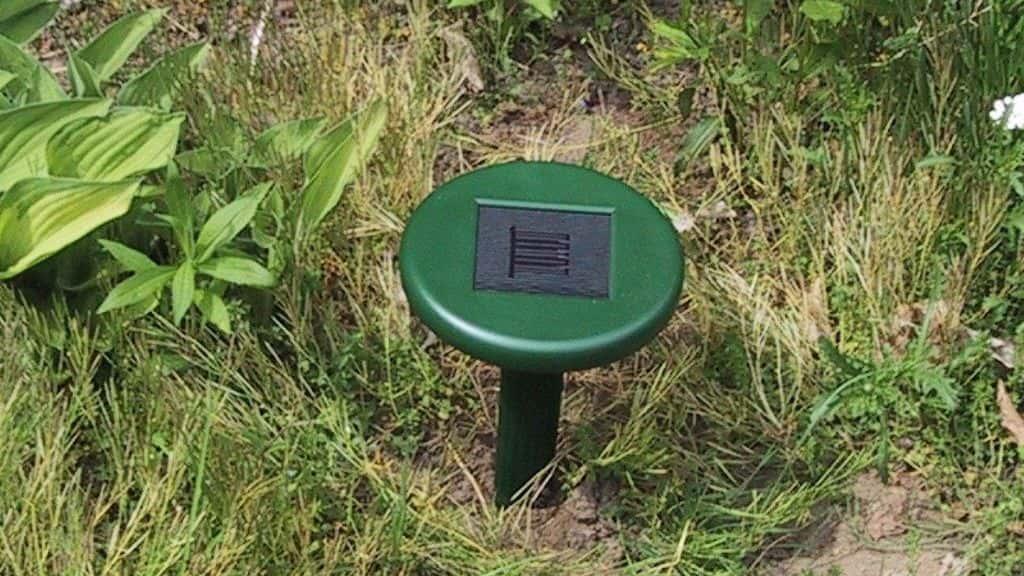 ультразвуковые отпугиватели против огородных вредителей