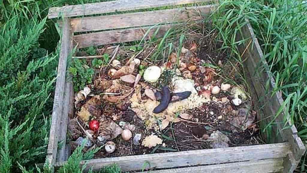 наполнение компостной ямы