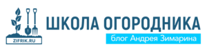 школа лого